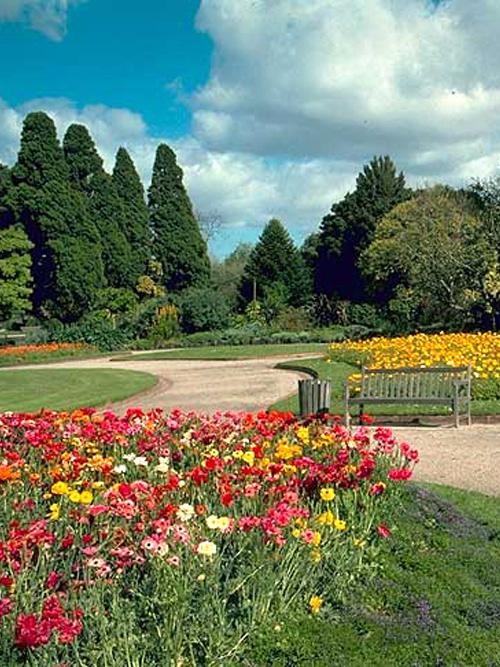 st-kilda Botanic Gardens